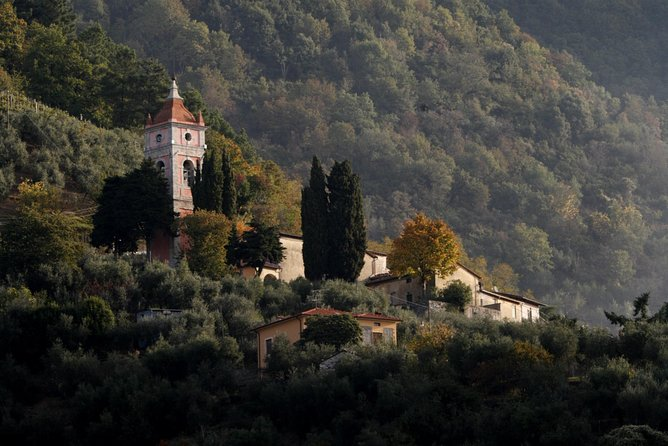 Relaxation week and bike excursions in the Tuscan countryside