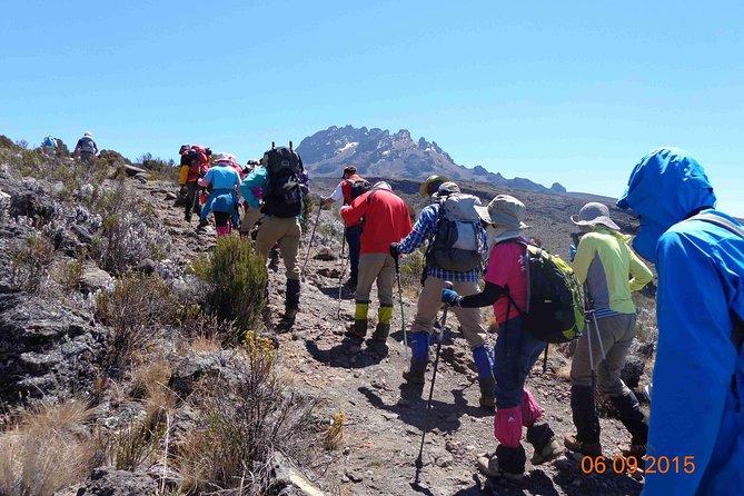 Kilimanjaro Climb 7 Days Lemosho Route