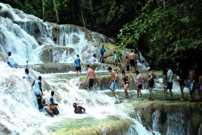 Half-Day Dunn's River Falls Tour from Montego Bay