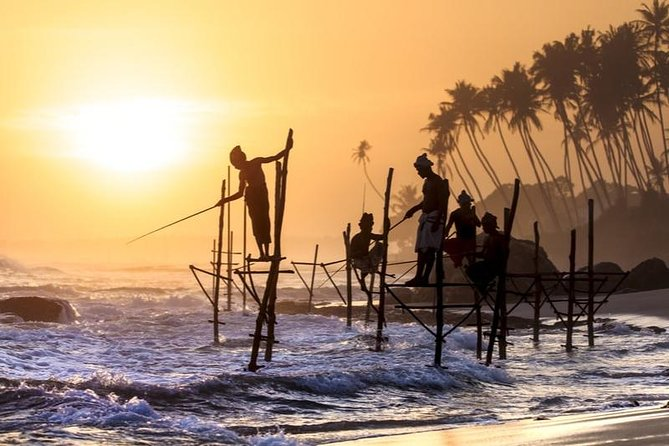 Galle Day Trip With Stilt fishing Experience From Colombo