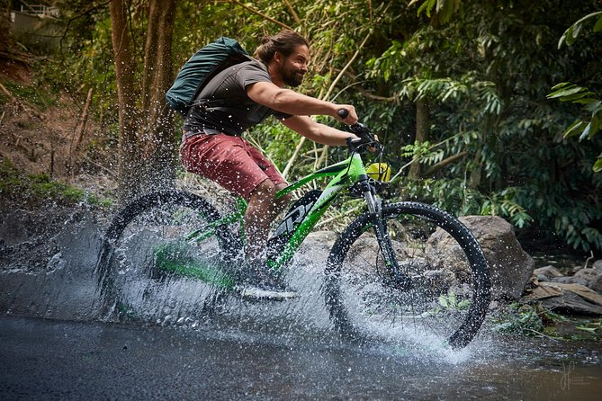 Moorea e-bike day tour (7h or 3.5h)