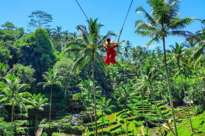 Best of Ubud Tour with Swing & Lunch
