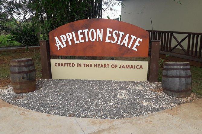 Private Appleton Estate Rum and Black River Safari Tour
