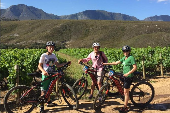 Mountain bike along the network of trails through the Hemel en Aarde valley