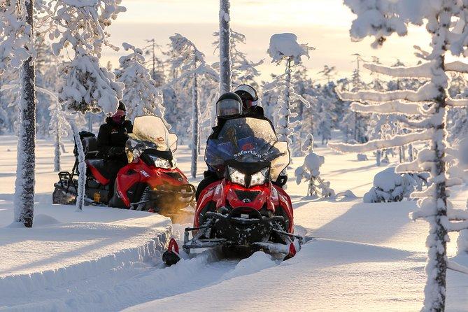 In Pursuit of Reindeer - Snowmobile safari to reindeer farm in Rovaniemi