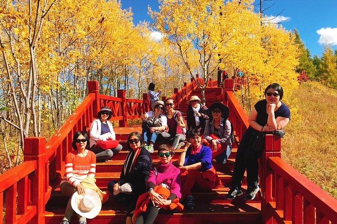 Grand Inner Mongolia Adventure- Hailar, Enhe, Shiwei, Erguna, Manzhouli, Aershan