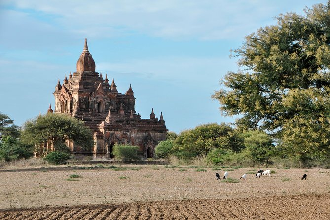 UNESCO World Heritage Bagan: Archaeological Temples by E-Bike photo 7