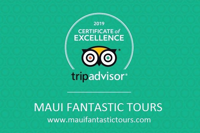 Hana, Waterfalls, Black Beach & Turtles Tour from Kahului