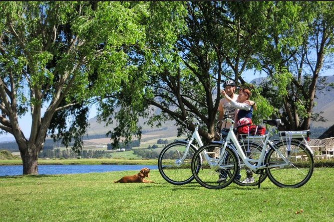 Ecity bike tour around Hermanus