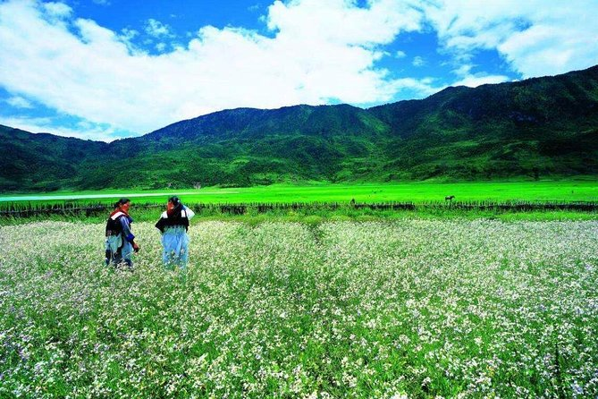 Private trekking tour to Wenhai lake from Lijiang half day service