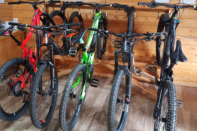 Sila National Park: MTB or electric bike rental in Lorica