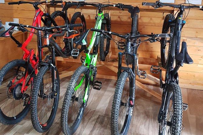 Sila National Park: MTB or electric bike rental in Lorica