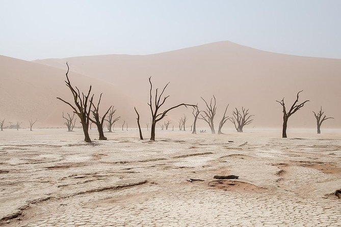 10 Days Taste of Namibia