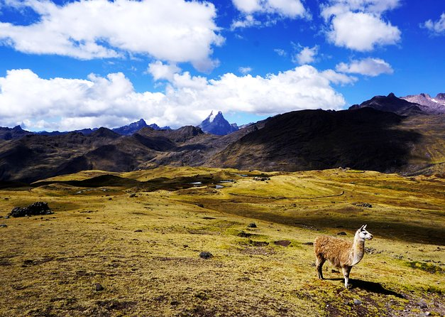 Lares Trek 4 days to Machu Picchu All Included photo 1