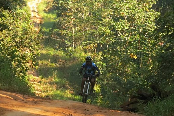 Jungle ride by mountain bike