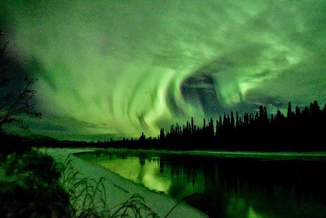Northern Lights and Huskies