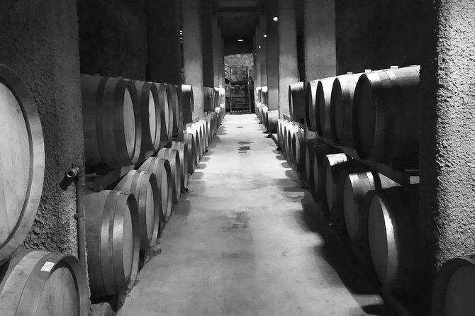 Luján de Cuyo best Wines- Ultimate Wine Tour