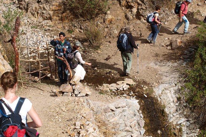 Hike from Apu Salkantay to Machu Picchu 5 Days