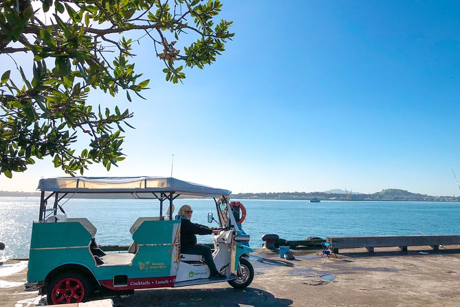 City Sprint One Hour Electric Tuk-Tuk Private Heritage and Cultural Tour