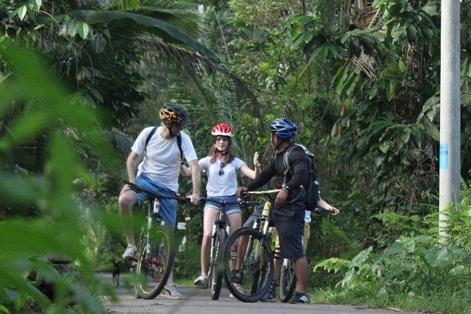 Private cycling Tour from kintamani to Ubud - Balitouractivity