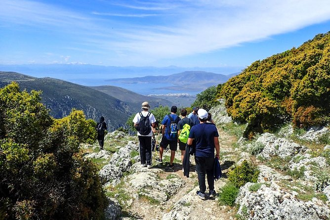 Athens to Delphi: Hike and History Tour