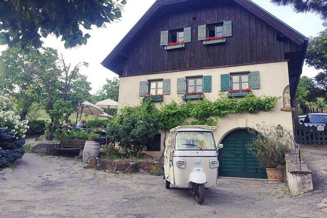 "La Dolce Vienna - Ape Sightseeing Tour ""Vino"" - no indoor, save activity"