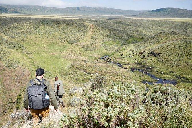 7 Days and 6 Nights Ngorongoro Highland Trekking