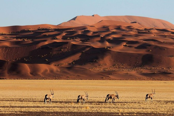 15 Days All About Namibia