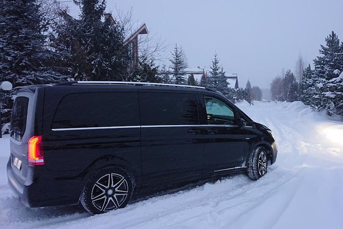 Private tour in Rovaniemi Husky sledding