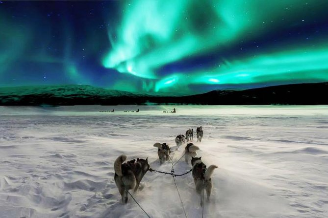 Fantastic Northern Lights with us in Rovaniemi by private car