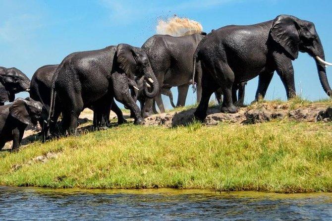 15 Days Namibia and Botswana