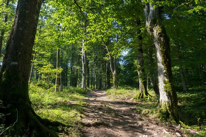 Hiking tour with the tastes of the Gabrovo Balkan