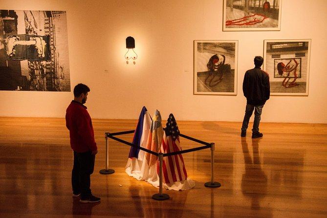 Contemporary Art Santiago Private Tour