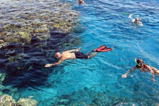 Marsa Mubarak Snorkeling Sea Trip - Marsa Alam