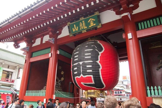 1-Day Tokyo Private Custom Tour by Chartered Vehicle