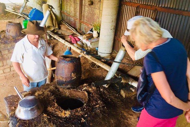 Great oaxacan mezcal masters of ancestral mezcal: Distileries & Mezcal Tasting