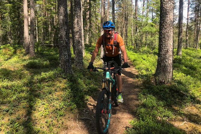 Mountain Bike - Voss Forest