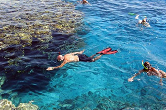 Snorkeling by boat to Ras Mohamed in Sharm el sheikh photo 7