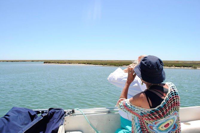 2-hour Bird Watching Guided Boat Trip in Ria Formosa from Faro Algarve