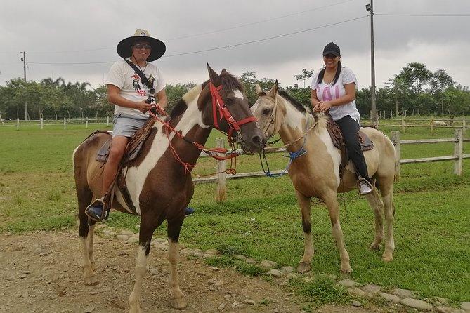 Horseback riding near Guayaquil day trip