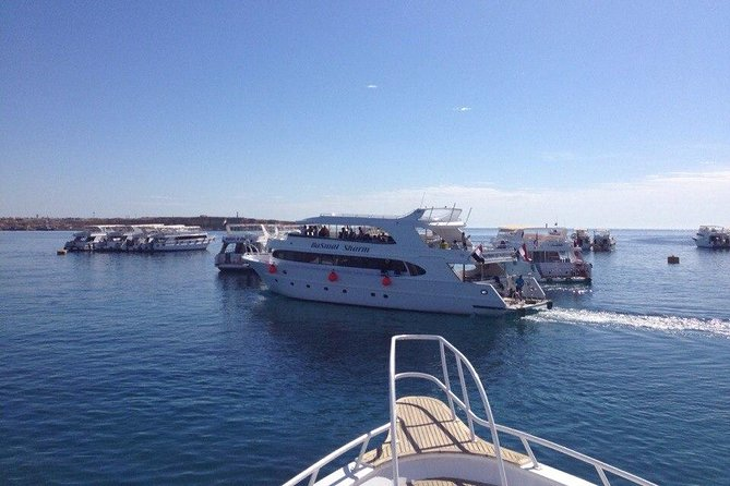 1 Day Snorkeling Trip to Tiran Island by Boat