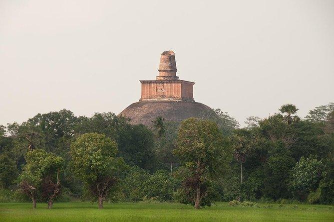 Cycling in Anuradhapura Ruin City