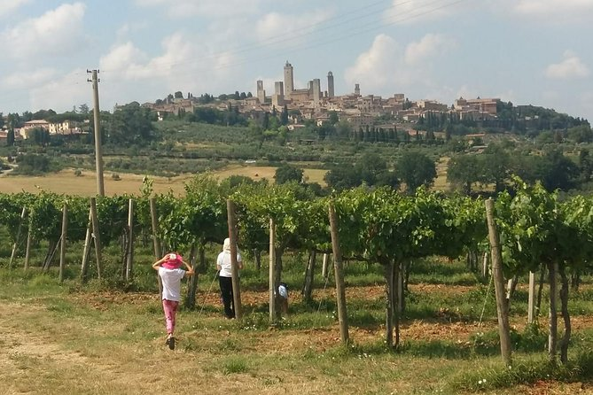 Wine Cheese and EVO Oil Tastings Southern Tuscany Fullday from Rome photo 24