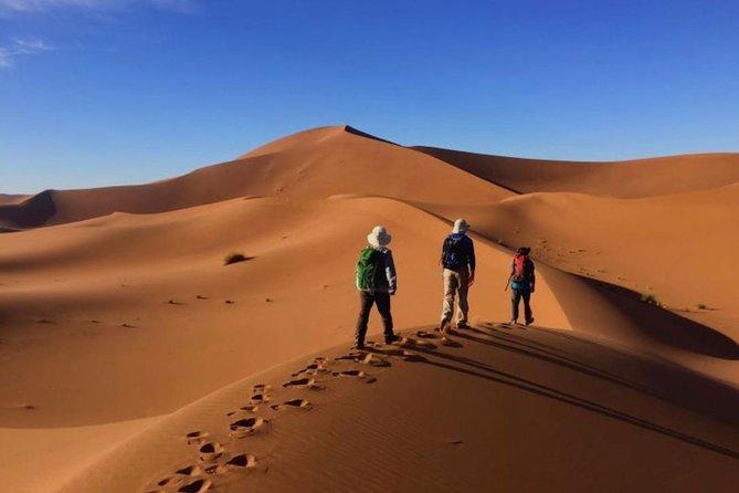 2 Day Private Berber Desert Tour - Marrakesh > Zagora