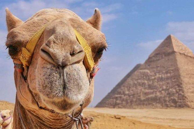 Private Tour of the Pyramids
