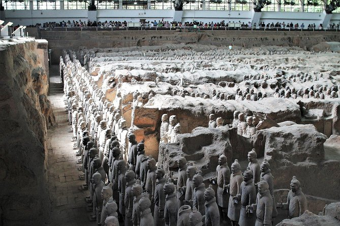 Terracotta Warriors Museum Discovery Tour with Local Xi'an Lunch
