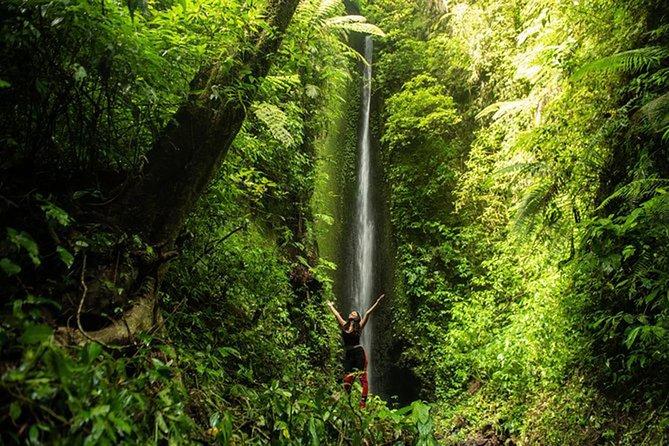 Bali Breathtaking Adventure: Arjuna Gorge Walk