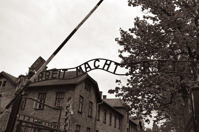 From Krakow: Auschwitz - Birkenau and Salt Mine in One Day Private Tour