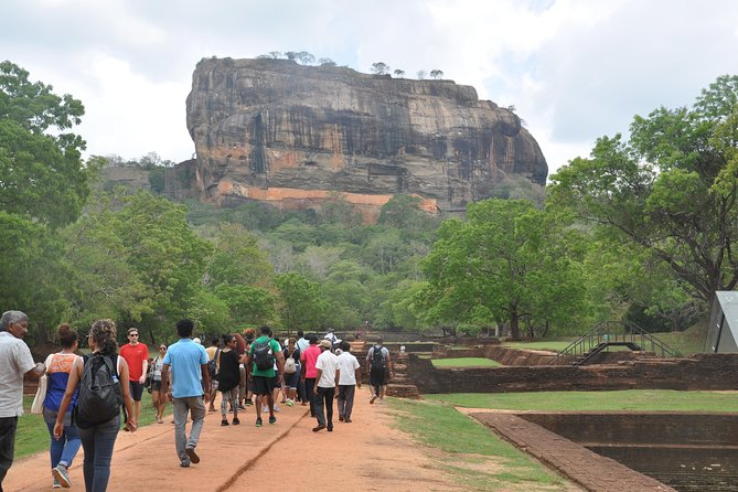 Sigiriya Rock and Wild Elephant Safari from Sigiriya (Private Day Tour) photo 6