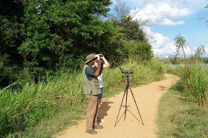 Birdwatching Walk at Habarana Lake